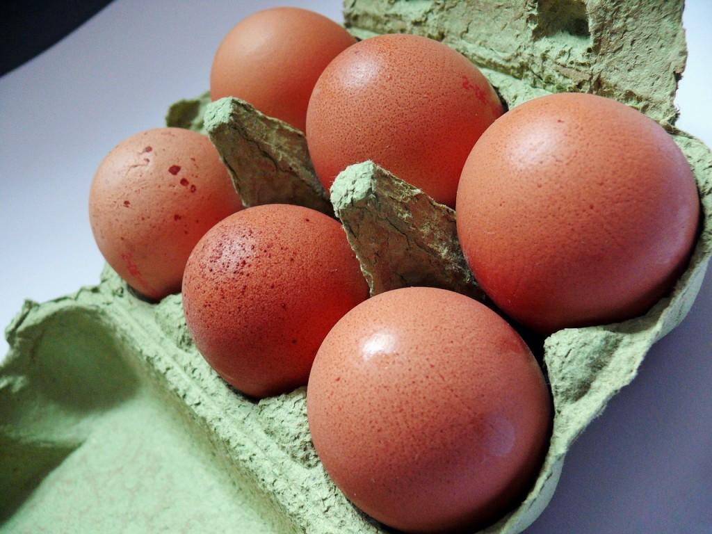 egg-1878043_1280