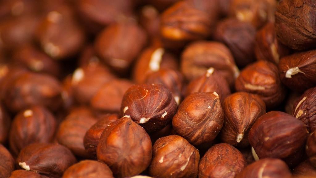 hazelnuts-1707601_1280