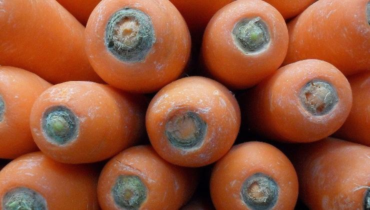 carote per la torta di carote americana