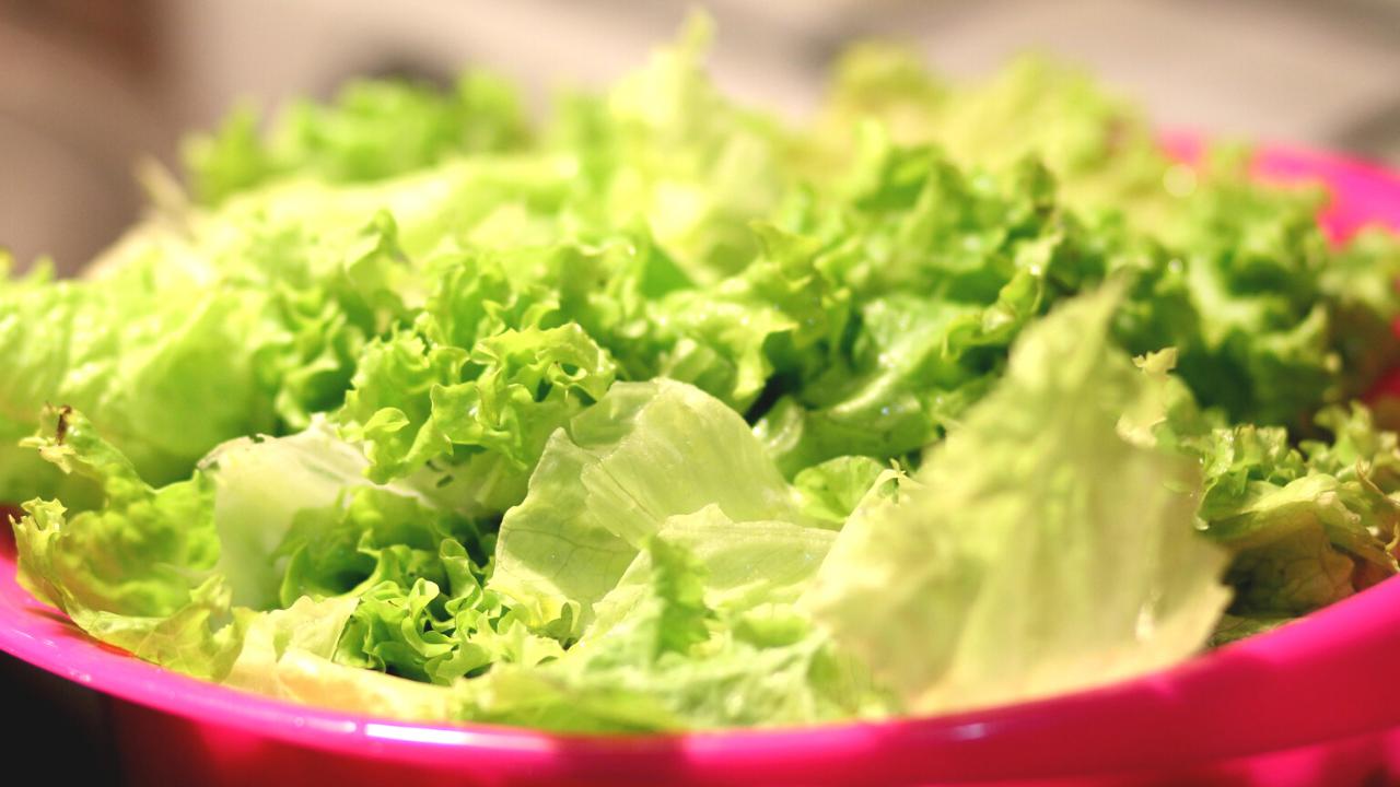 insalata-frigo