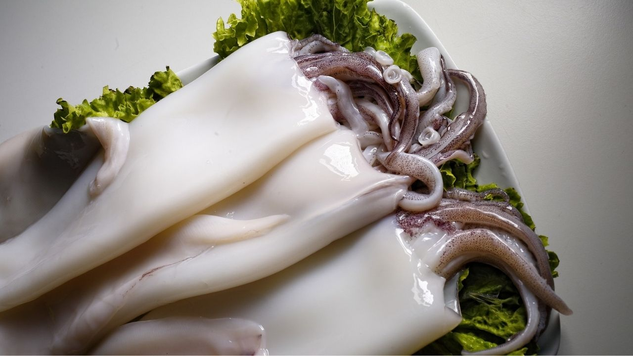 come-pulire-calamari-totani-seppie